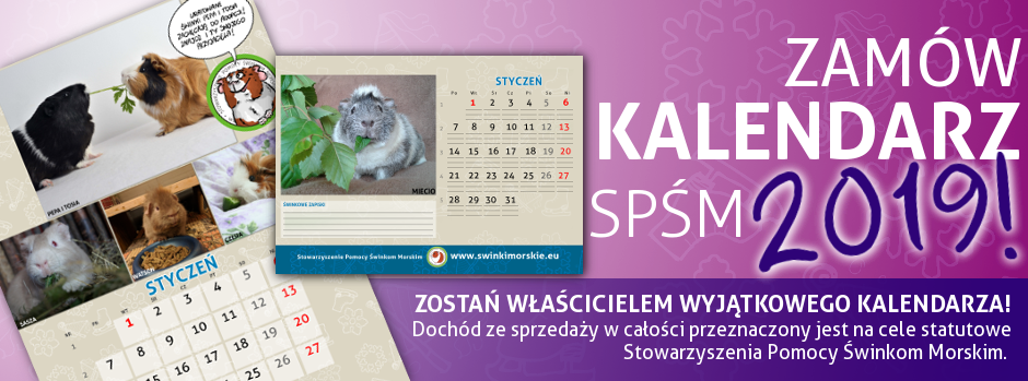 banner kalendarze
